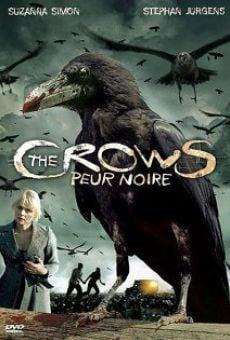 Ver película Cuervos