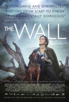 Watch Die Wand online stream