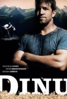 Ver película Dinu - der Schwerkraft entgegen