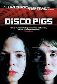 Ver película Disco Pigs