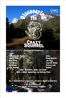 Discovering the Crazy Squirrel