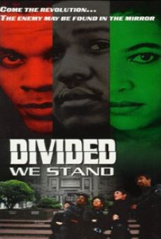 Divided We Stand online free
