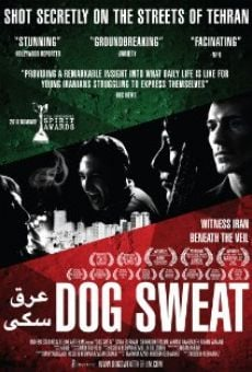 Dog Sweat online