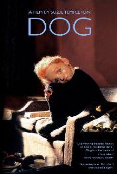 Ver película Dog