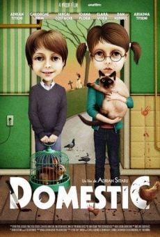 Ver película Domestic