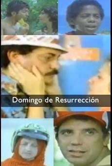Ver película Domingo de Gloria