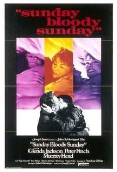 Ver película Domingo, maldito domingo