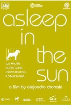 Ver película Dormir al sol