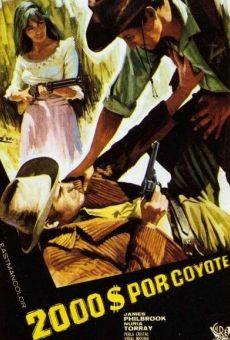 Ver película Dos mil dólares por Coyote