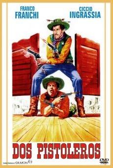 Ver película Dos pistoleros