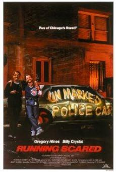 Ver película Dos policías en apuros