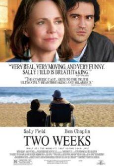 Ver película Dos semanas