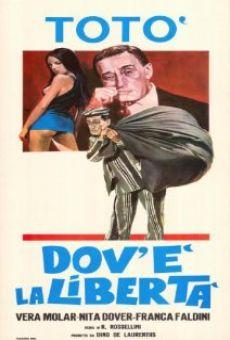 Dov 39 la libert 1954 film completo italiano - La finestra di fronte film completo ...