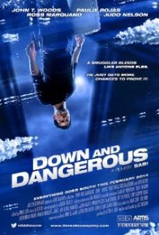 Película: Down and Dangerous