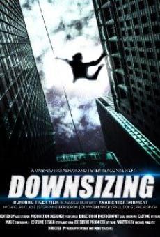 Ver película Downsizing
