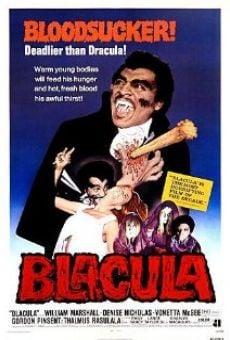 Ver película Drácula negro
