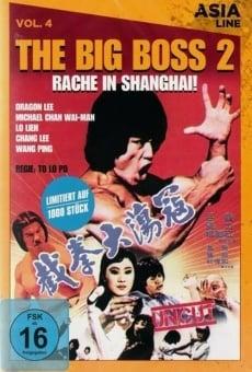 Ver película Dragon Bruce Lee, Part II