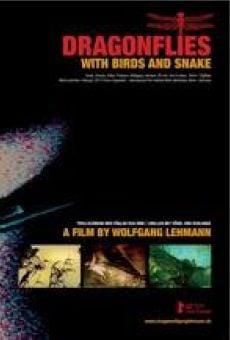 Ver película Dragonflies with Birds and Snake