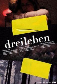 Ver película Dreileben: Komm mir nicht nach
