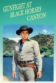 Ver película Duelo en el cañón