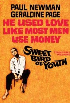 Ver película Dulce pájaro de juventud