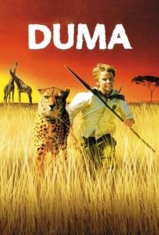 Ver película Duma
