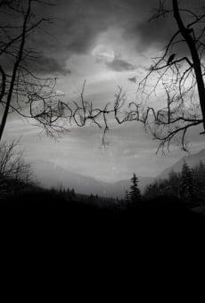 Ver película Dunderland