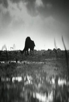 Ver película Dyret (Creature)