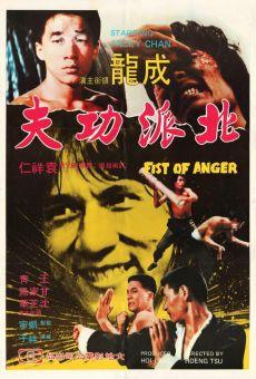 Ver película Eagle Shadow Fist (AKA Fist of Anger )
