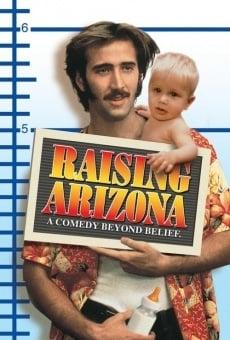 Arizona junior streaming en ligne gratuit