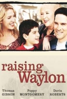 Ver película Educando a Waylon