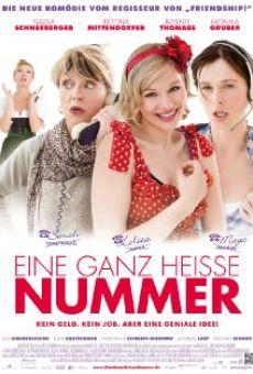 Ver película Eine ganz heiße Nummer