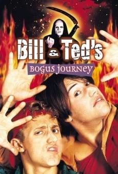 Ver película El alucinante viaje de Bill y Ted