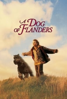 A Dog of Flanders online