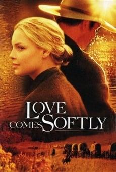 El amor llega suavemente online