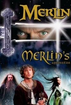 Ver película El aprendiz de Merlín