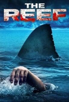 Ver película El arrecife