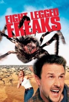 Ver película El ataque de las arañas