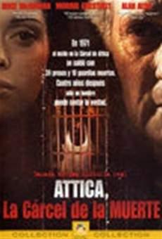 Ver película El ático
