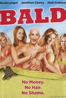 Ver película El baldío