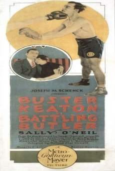 Ver película El boxeador