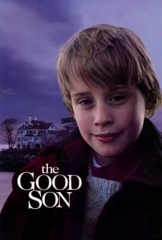 Ver película El buen hijo