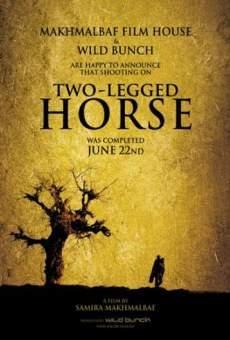 Ver película El caballo de dos piernas