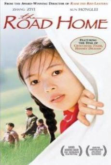 Ver película El camino a casa