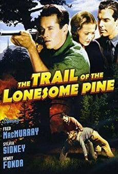 Ver película El camino del pino solitario