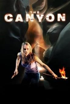 The Canyon Film Deutsch
