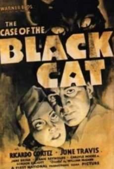 Ver película El caso del gato negro