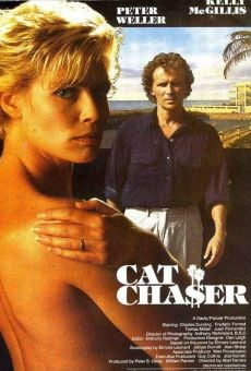 Cat Chaser online free