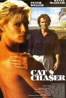 Ver película El cazador de gatos