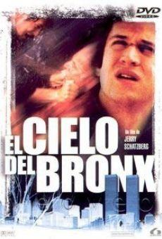 Ver película El cielo del Bronx